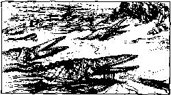 Cartoon showing crocodiles lunging at a shore where humans cower.
