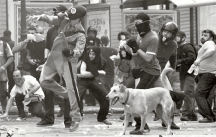 Kanellos, the ubiquitous Greek Riot Dog