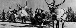 Image: Reindeer served as a substitute for the horse, cow, sheep, and goat, and were trained to draw sledges, or pulkas, as the Lapps called them.